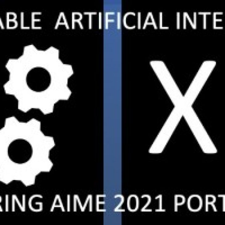 XAI-HEALTHCARE workshop: Explainable Artificial Intelligence in Healthcare